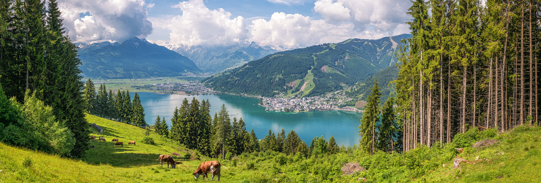 summer-lake-switzerland-travel-view